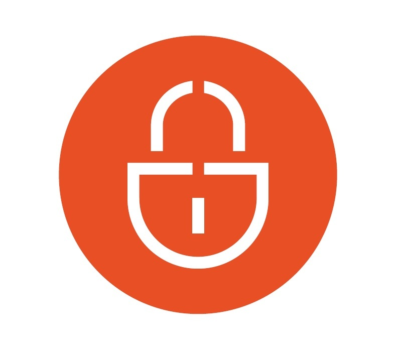 security-icon.jpg#asset:862