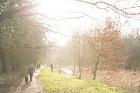 Cassiobury Park