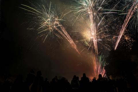 Firework Thumb 2018