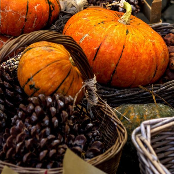 Halloween Image Thumb